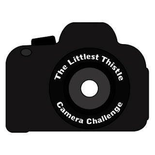 The RAW Deal In Photography – Final Camera Challenge Follow Up